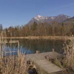 Au bord du lac des Vernays, avec vue sur le Marcelly